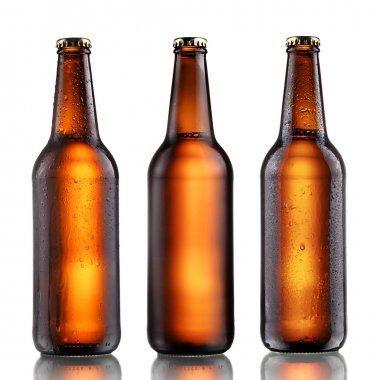 Full beer bottles set