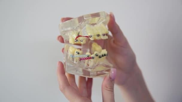 Zahnuntersuchungen, Zahnreinigungssysteme, mit Zahnspange, zeigt den Zahnarzt