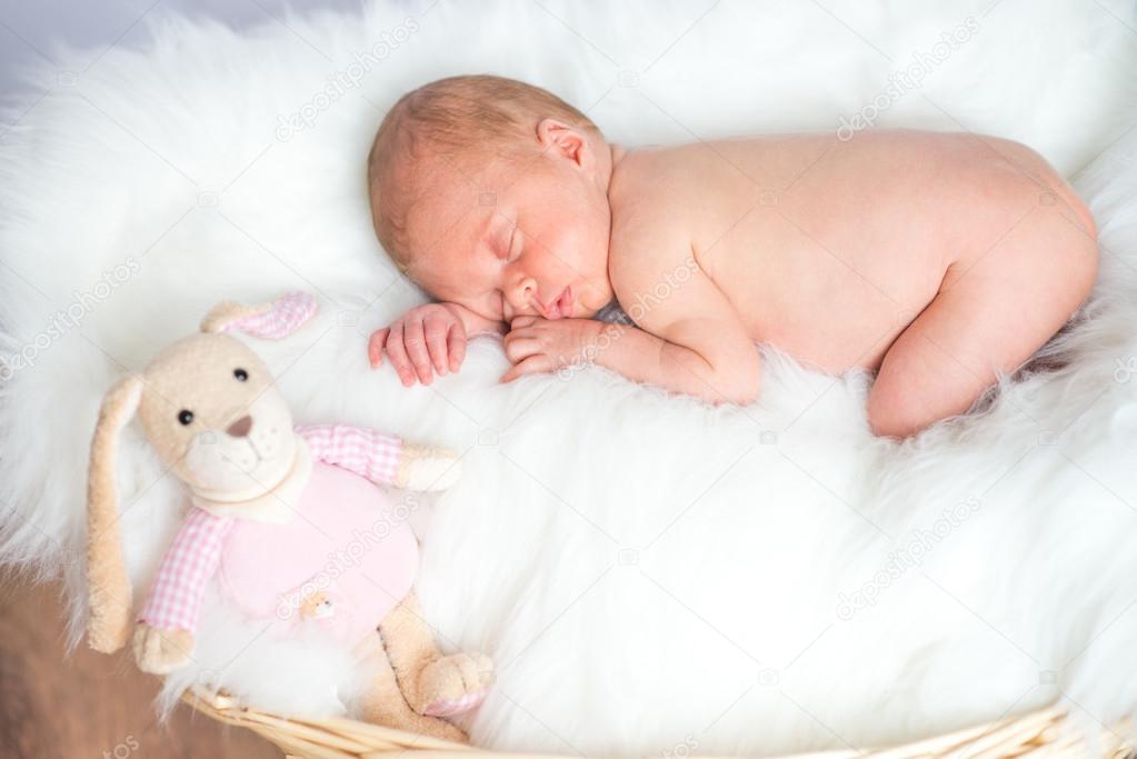 Canasta De Recien Nacido.Imagenes Bebes Recien Nacidos Dormidos Bebe Recien Nacido