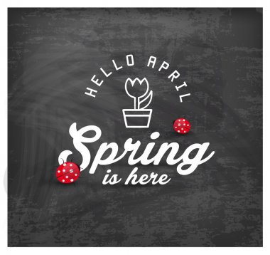 Spring is Here Typography Background on Chalkboard