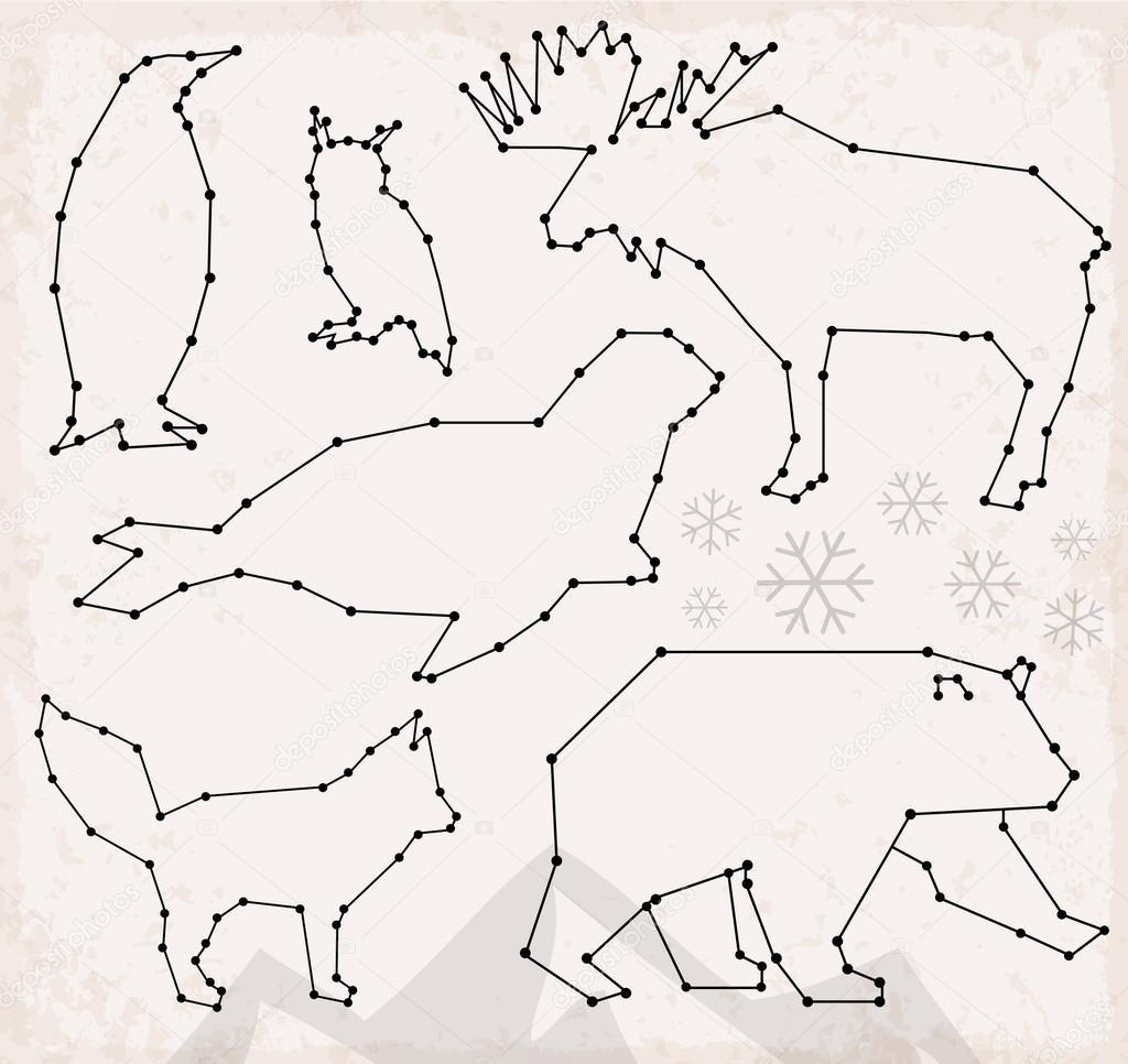 Animales árticos línea abstracta y punto conjunto ilustraciones ...