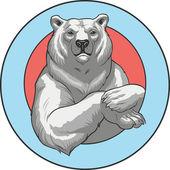 Fotografie White bear