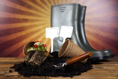 Garden boots with tool, plant