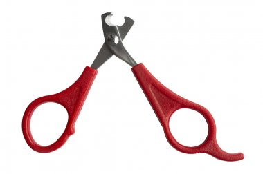 Scissors for claws for pets (dogs, cats, rabbits) isolated on wh