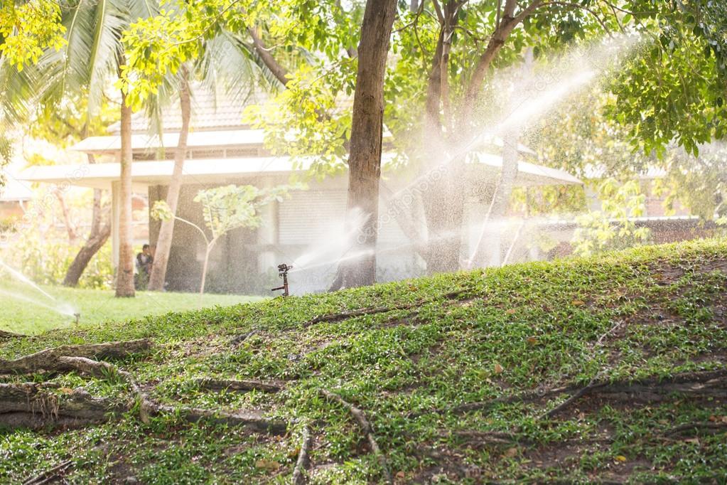 Garten Regner An Einem Sonnigen Sommertag Während Bewässerung Grün