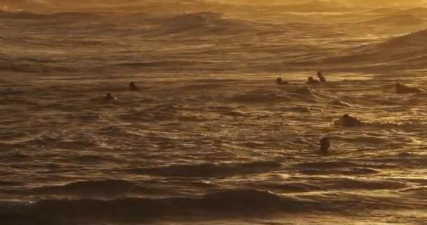 surfování při západu slunce, Palavas les Flots, Occitanie, Francie