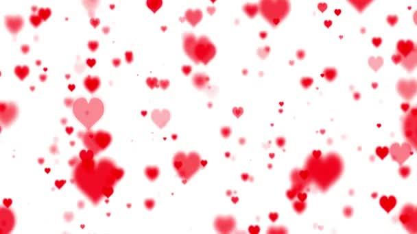 Valentýn. Mnoho krásné červené srdce na bílém pozadí. Animační srdce