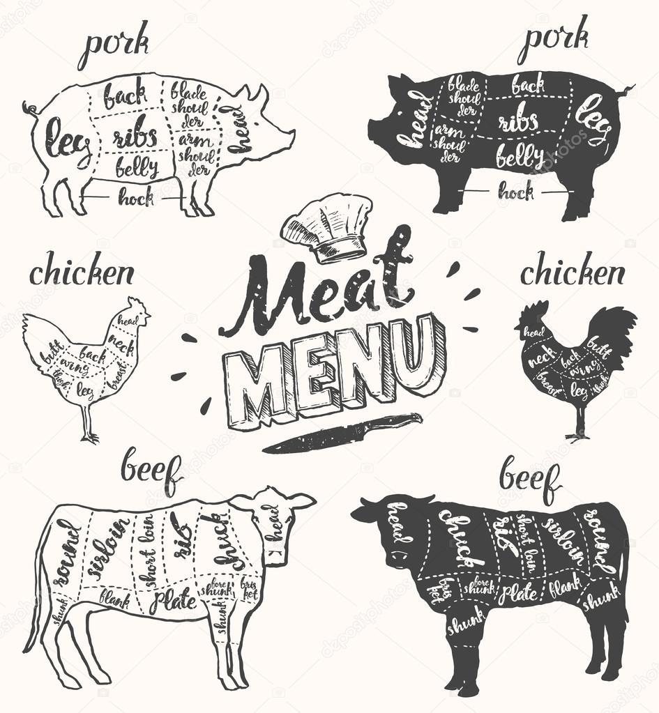 fc9c873a5c Cortes de carne de vacuno de carne menú cerdo pollo vector dibujado a mano–  ilustración de stock