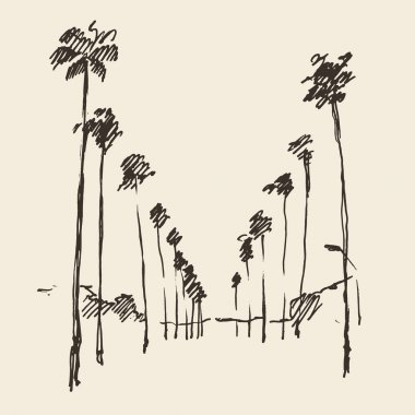 Hand drawn Los Angeles  city