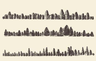 Mountains Contours Fir Forest Engraving Vector