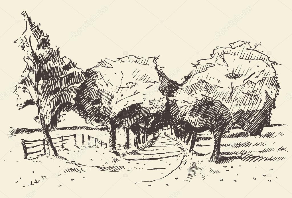 Hand drawn landscape trees meadow illustration