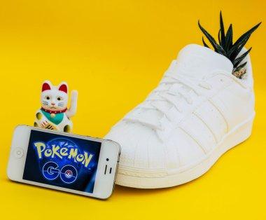 Pokemon Go interface on smartphone screen