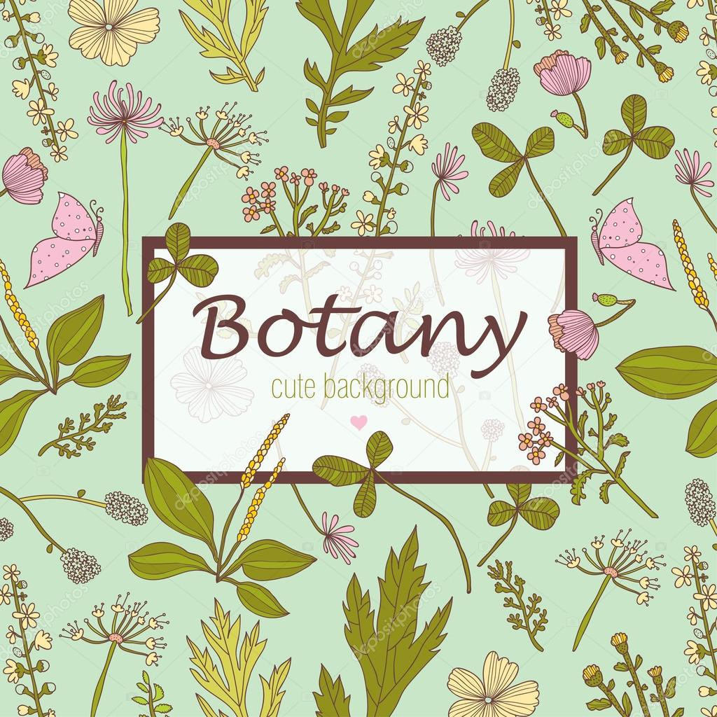 Botany postcard with flowers