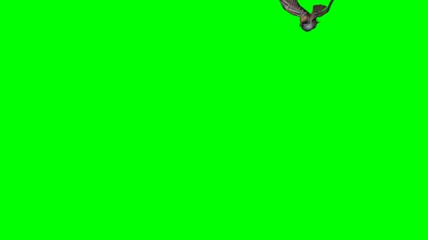 Sparrow flying and landing - green screen
