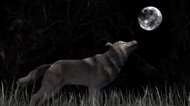 farkas üvölt a holdra