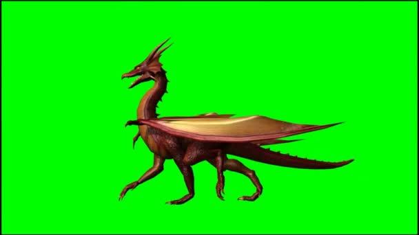 Nagy sárkány járás