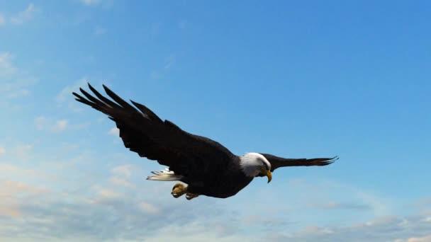 Bald Eagle repülés közelről nyomon követés lövés