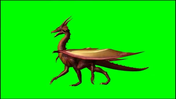 Velký drak chůzi