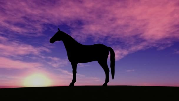 Horse silhouette Rise in Sunset