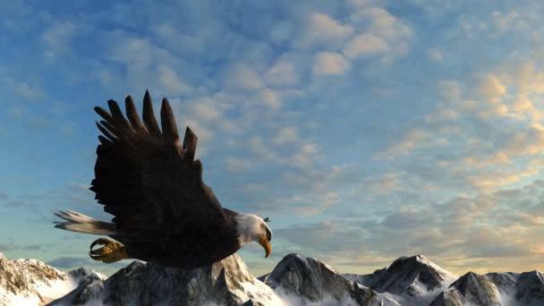 Weißkopfseeadler fliegt über Berge