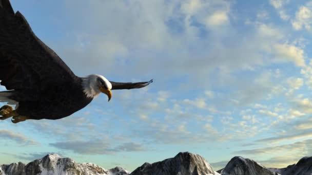 Kopasz sas repül át hegyek