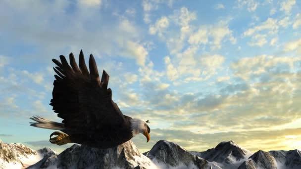 Orel bělohlavý letí přes hory