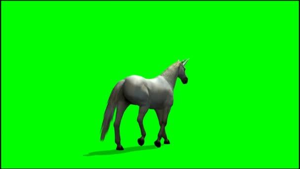 Jednorožec na zeleném pozadí