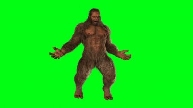 Brown Sasquatch bigfoot