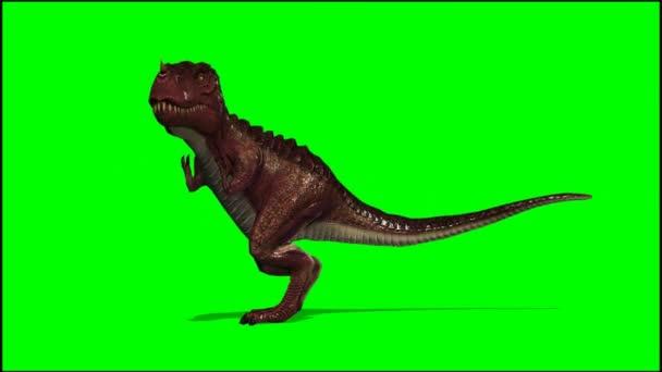 T-Rex Dinosaurier roars