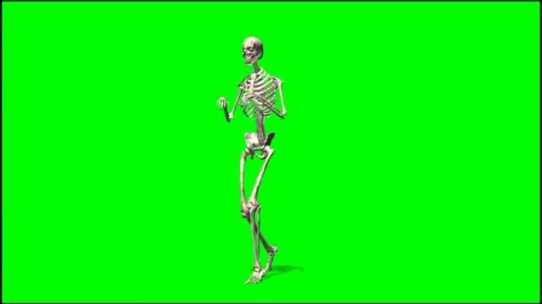 Male skeleton sneaks