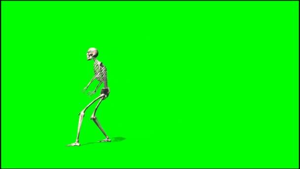 Skeleton dancing rap