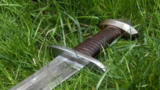 mittelalterliches Schwert im Gras
