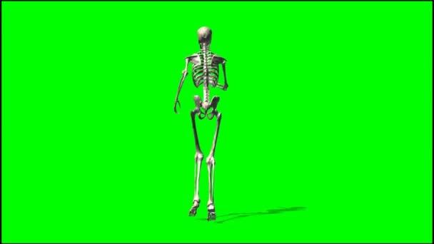 Mužské kostry běží