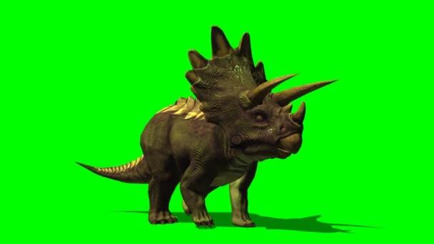 Dinosaurus Triceratops procházky
