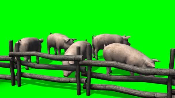 Prasata za dřevěný plot