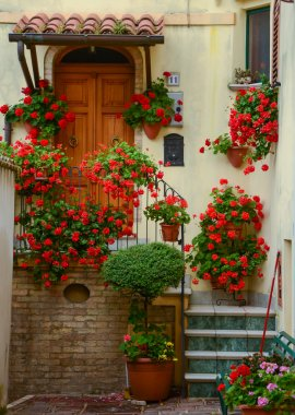 Courtyard in town Atri, door and stairs with red flowers