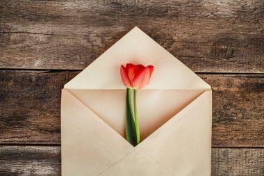 Spring flower in envelop over wooden background