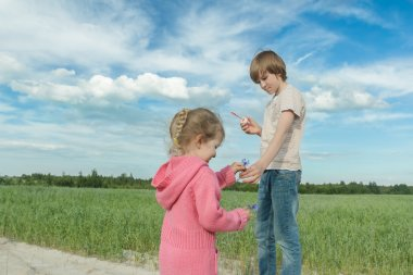 Sibling children sharing blue cornflowers and soap bubbles in green summer oat field