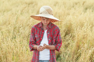 Portrait of teenage farmer boy is checking oat seeds in cupped palms at ripe field