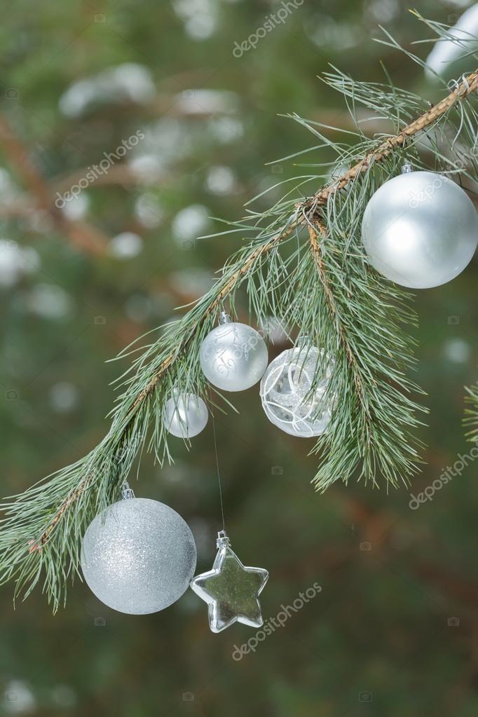 Schneebedeckten Kiefer Grune Zweige Mit Christbaumschmuck Kugeln Und