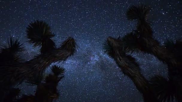 Mléčná dráha nad Joshua Tree