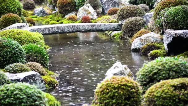Teich im Regen am japanischen Garten