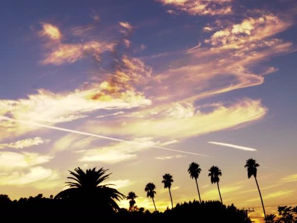 západ slunce časová prodleva přes palmy