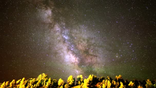 Milky Way over Alpine Forest