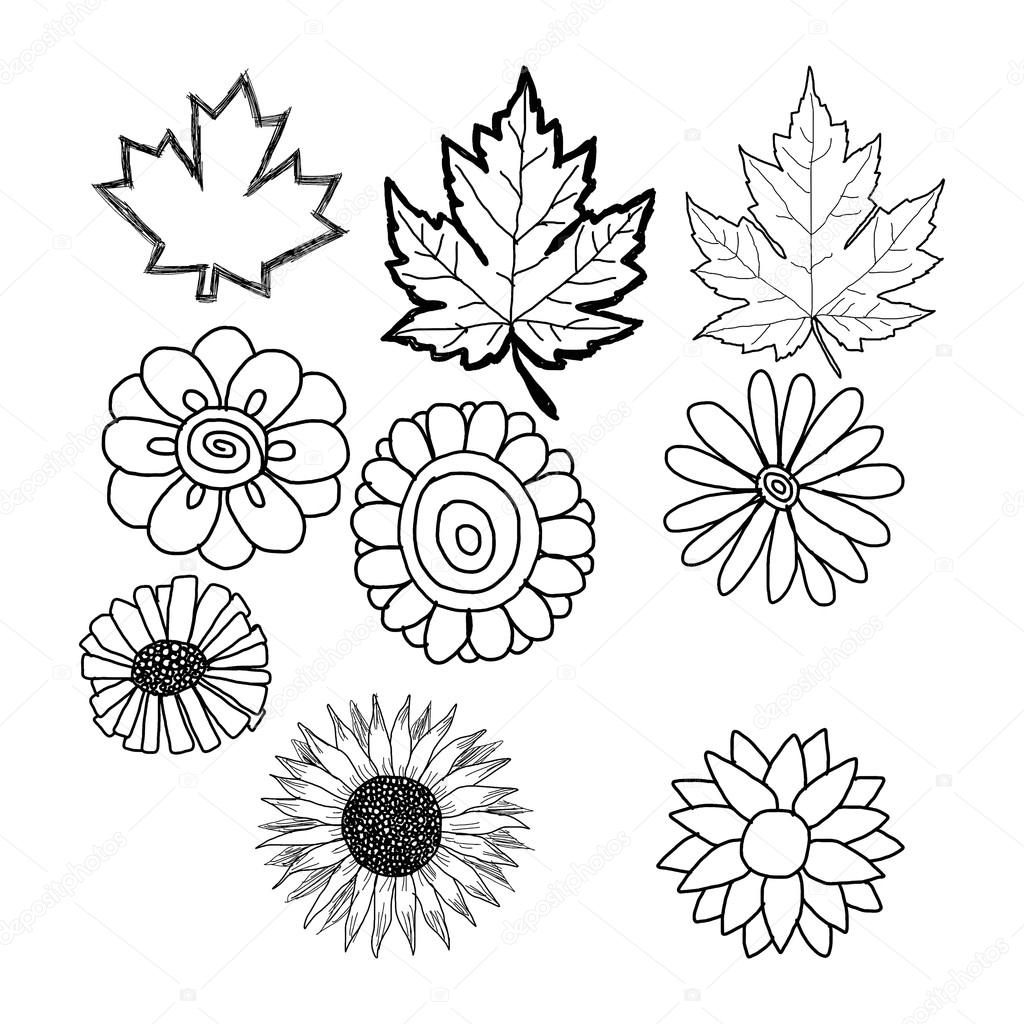 hand drawn doodles of flower and leaf