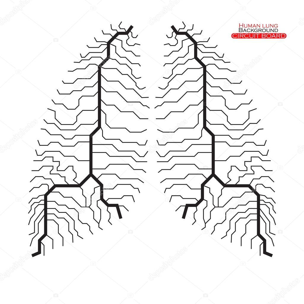 Circuito Vascular : Pulmón humano. placa de circuito. ilustración de vector. 10 eps