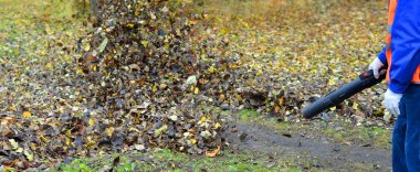 Cleaning autumn leaves 4. The worker in a uniform clears a path.
