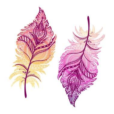 illustration of Boho feathers.