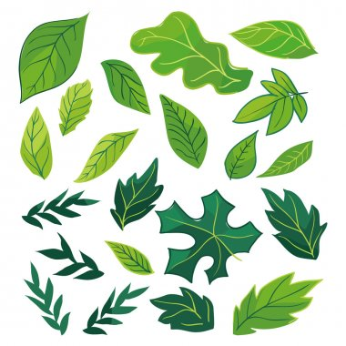 Ecology leaves icon