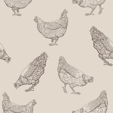 hand drawn hen
